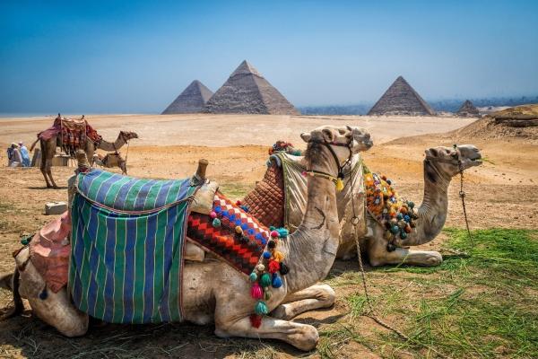 Новые отели в Египте